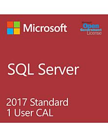 Microsoft SQL User CAL (SA only)